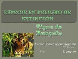 Andrea Michelle Alvarez Cordero_Peligro de Extinción (848147)