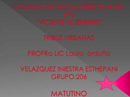 COLEGIO DE BACHILLERES PLANTEL N°6 *VICENTE