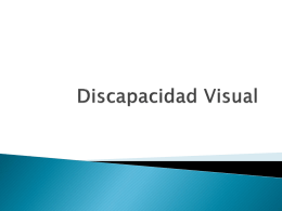 Discapacidad Visual.