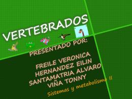DIAPO VERTEBRADOS.