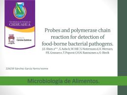 Salmonella - FCQ-MicrodeAlimentos