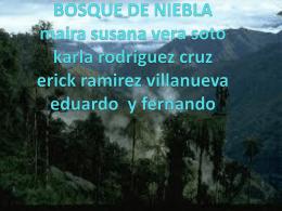 Bosques Nublados (1)