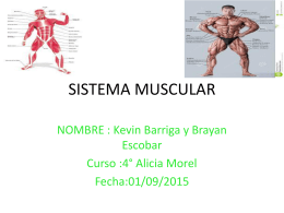 Brayan y Kevin - Connect Ciencias SJD