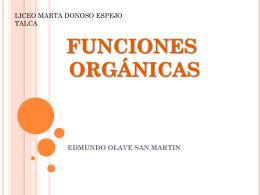 ppt grupos funcionales - Liceo Marta Donoso Espejo