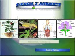 CIENCIA Y AMBIENTE El sistema respiratorio