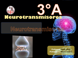 POWER NEUROTRANSMISORES.