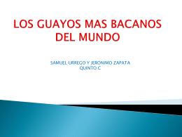 LOS GUAYOS MAS BACANOS DEL MUNDO