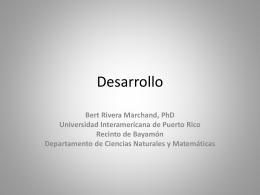 Desarrollo - Universidad Interamericana de Puerto Rico