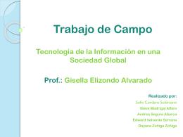 Trabajo de Campo - tisgpal1-3