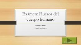 Examen: Huesos del cuerpo humano