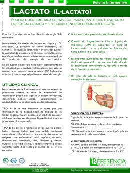 Lactato (L-lactato)