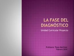 La fase del Diagnóstico Proyecto 2014