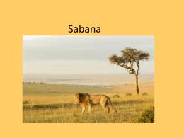 PPT Sabana - Languages.dk