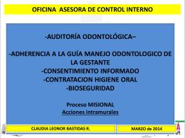 CONSOLIDADO AUDITORIAS 2013