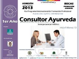 2014 - promocion consultor 2013
