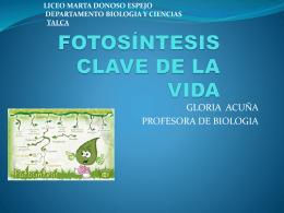 FOTOSiNTESIS_CLAVE_DE_LA_VIDA