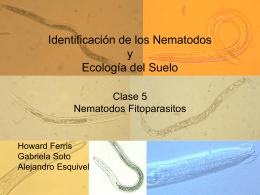Nematología y Ecología de Suelos - the University of California, Davis