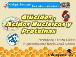 power repaso ácidos Nucleicos y Glúcidos.