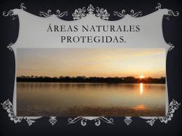 reas Naturales Protegidas