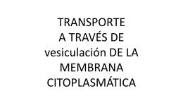receptores membranales