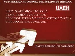 presentacion_erika_marlene_ortega_zavala (Tamaño: 602.96K)