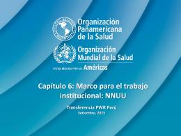 Capitulo 6 Marco para el trabajo interinstitucional