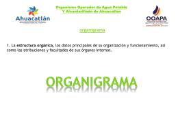 1_organigrama