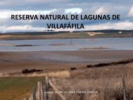 VILLAFÁFILA - Portal de Educación de la Junta de Castilla y León