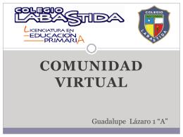 Comunidad Virtual (487424)