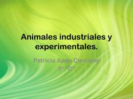 Animales industriales y experimentales.