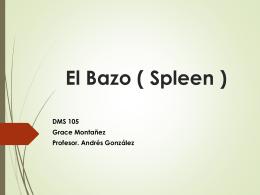 El Bazo ( Spleen )