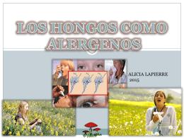 Alergia A hongos