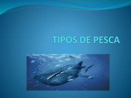 TIPOS DE PESCA