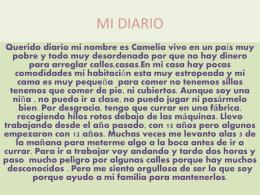 diario de camelia 27 - portafolio-2a