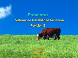 ProVentus - ort