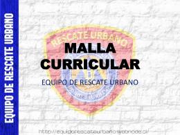 MALLA CURRICULAR (331754)