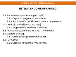 unidad 5 endomembranas (6768819)