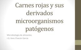Carnes rojas y sus derivados microorganismos patógenos