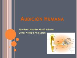Audici%80%A0%A6%F3n Humana