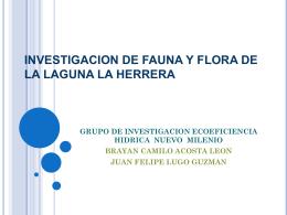 INVESTIGACION DE FAUNA Y FLORA DE LA LAGUNA