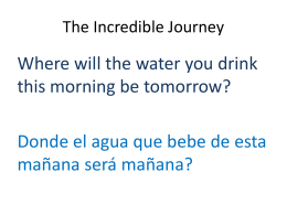 The Incredible Journey - WaterIssues-McCarthy-MJ-FA11