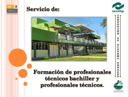 Formación de profesionales técnicos bachiller y