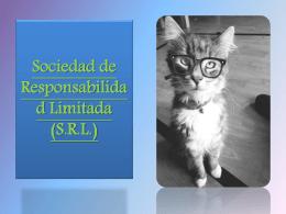 Sociedad de Responsabilidad Limitada (S (122316)