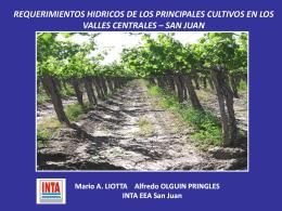 REQUERIMIENTOS HIDRICOS DE LOS PRINCIPALES CULTIVOS