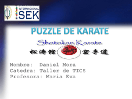 puzzle de karate