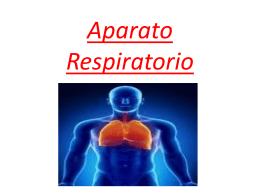 Enfermedades del aparato respiratorio (2)