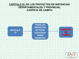 CAPÍTULO IV: DE LOS PROYECTOS EN INSTANCIAS
