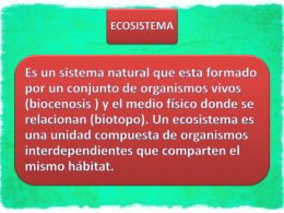 ECOISTEMA (2)