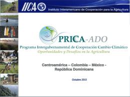 CAC_17 de Marzo - pincc