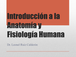 introduccinalaanatomayfisiologahumana